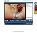 I'm Live webcams
