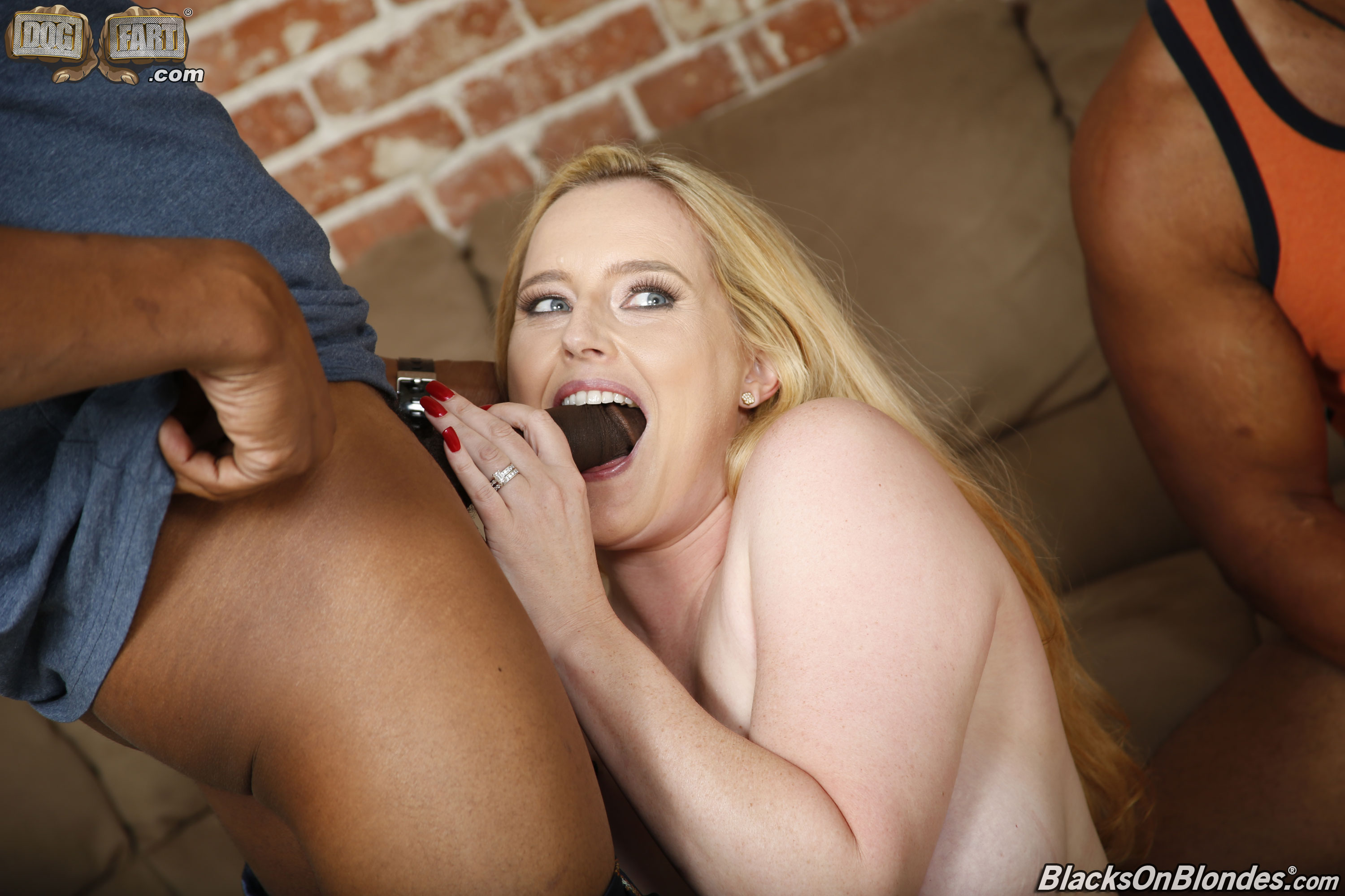 Blacks on blonde dogfart gallery